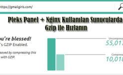 Pleks Panel + Nginx Kullanılan Sunucularda Gzip ile Hızlanın